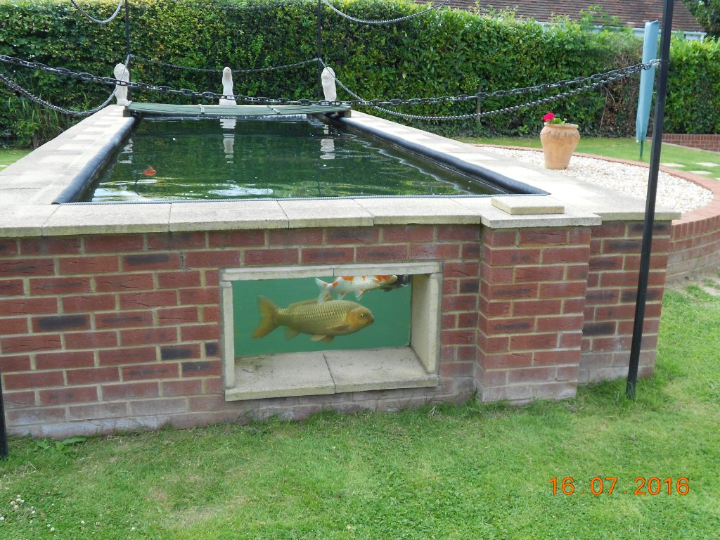 Doug & Lynnes pond.