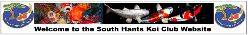 South Hants Koi Club